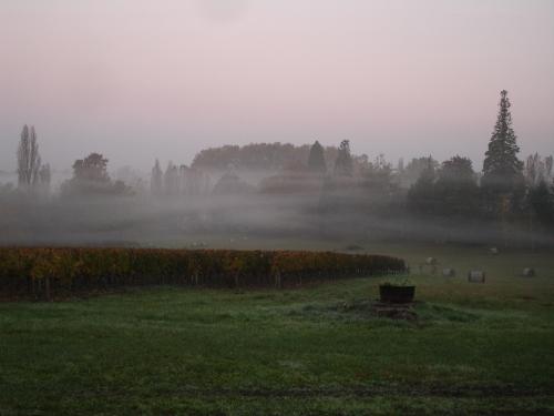 automne2007_10.jpg
